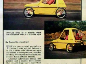 Pedicar_article